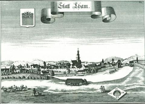 Вид города Кам.